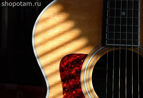 Гитара тейлор